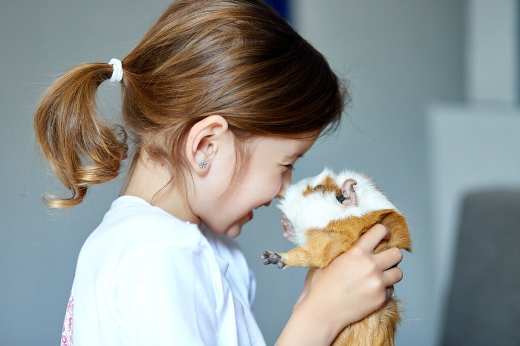 children and guinea pigs